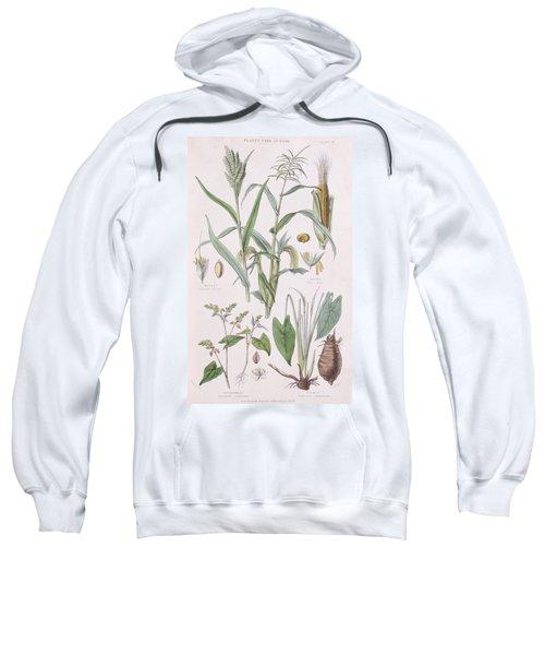 Millet Maize Buckwheat And Taro Sweatshirt