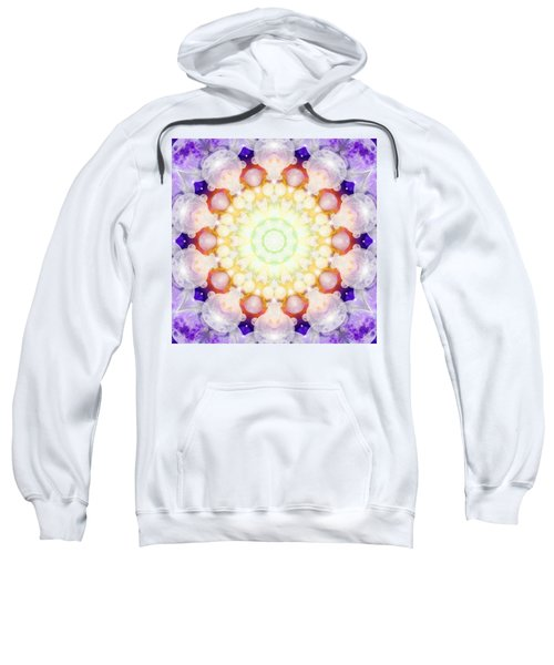 Moonstar Beta Sweatshirt