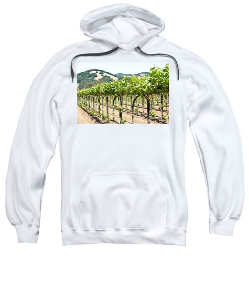 Napa Vineyard Grapes Sweatshirt