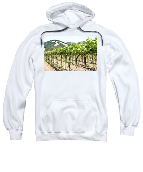 Napa Vineyard Grapes Sweatshirt