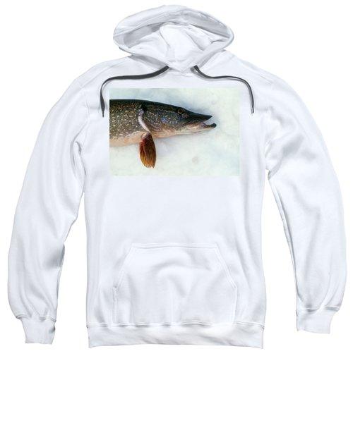 Northern Pike Fish On Snow, Close Sweatshirt