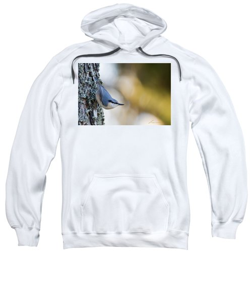 Nuthatch In The Classical Position Sweatshirt
