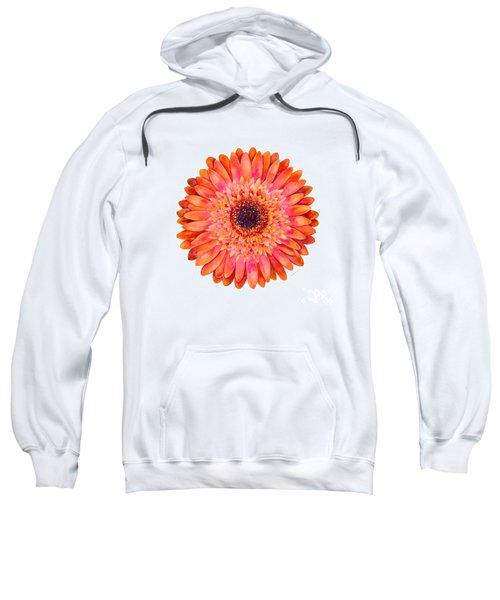 Orange Gerbera Daisy Sweatshirt
