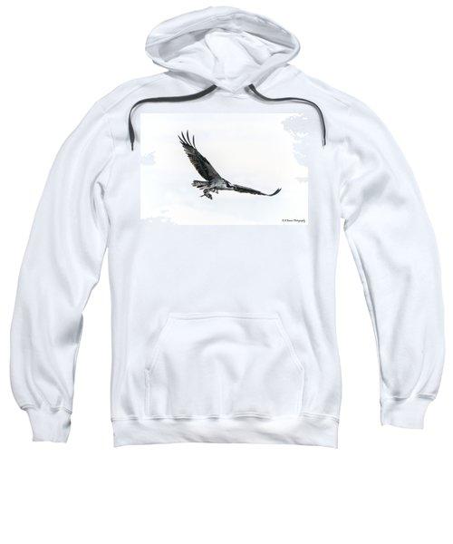 Osprey In Flight Sweatshirt