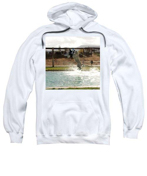 Out Of Africa Tiger Splash 7 Sweatshirt