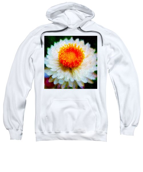 Paper Daisy Sweatshirt