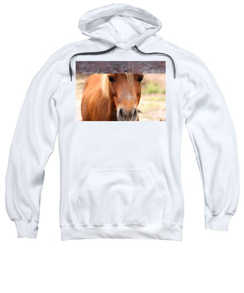 Peaking Pony Sweatshirt