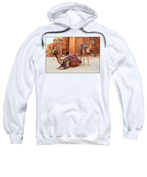 Petra Camels Sweatshirt