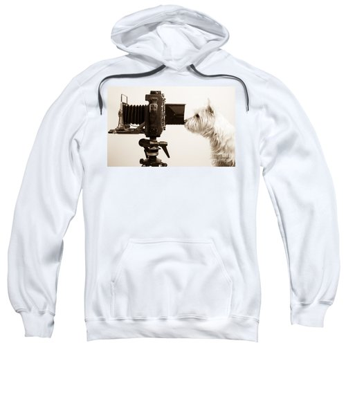 Pho Dog Grapher Sweatshirt