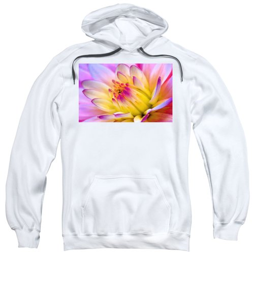 Pink And White Water Lily Sweatshirt
