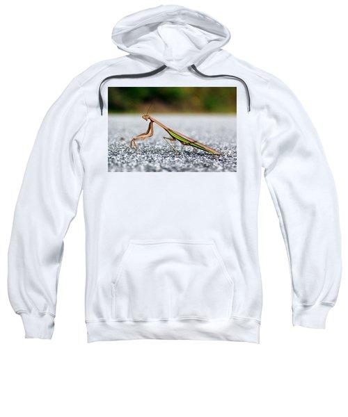 Posing For The Camera Sweatshirt