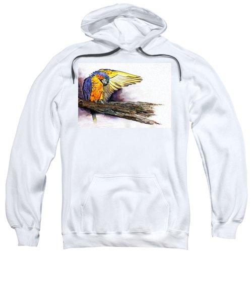 Pre-flight Check Sweatshirt