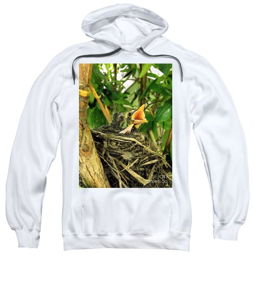 Promises Of A New Day Sweatshirt