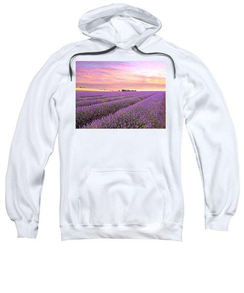 Purple Haze - Lavender Field At Sunrise Sweatshirt