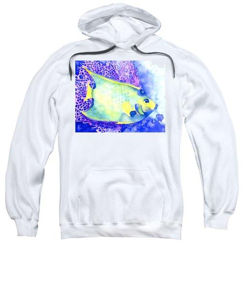 Queen Angelfish Sweatshirt