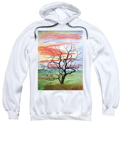 Rainbow Mesquite Sweatshirt