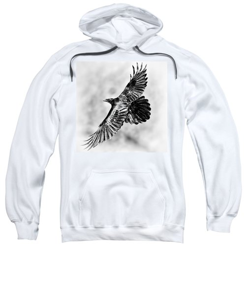 Raven Of Death Valley Sweatshirt