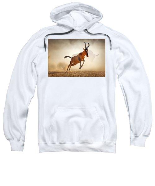 Red Hartebeest Running In Dust Sweatshirt