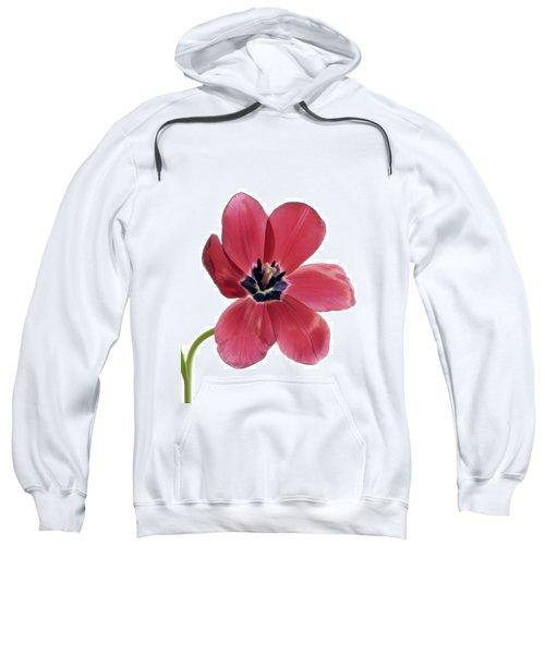 Red Transparent Tulip Sweatshirt