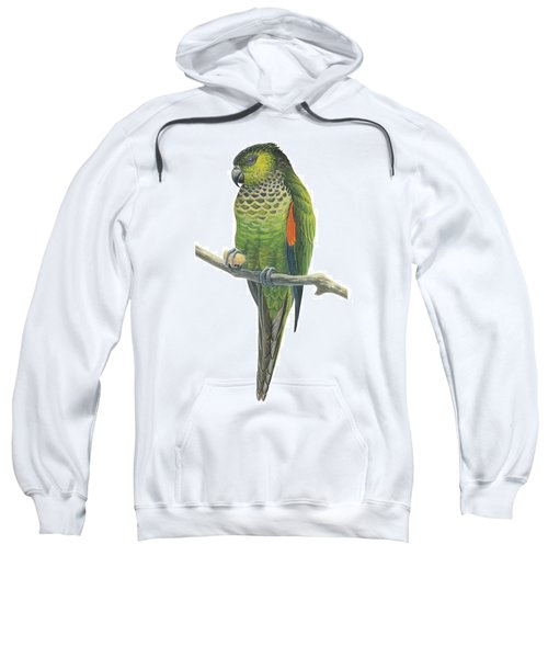 Rock Parakeet Sweatshirt by Anonymous