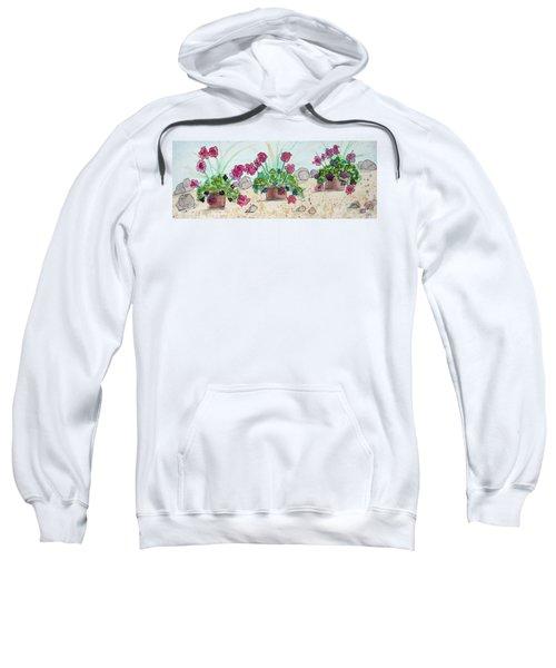 Rock Path Sweatshirt