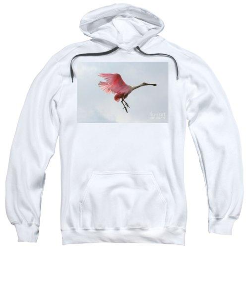 Roseate Spoonbill In Flight Sweatshirt by Carol Groenen