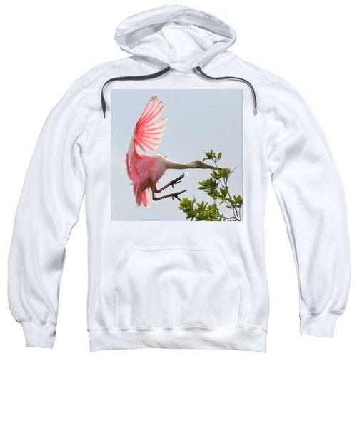 Rough Landing Sweatshirt by Carol Groenen