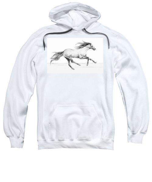 Runaway Sweatshirt