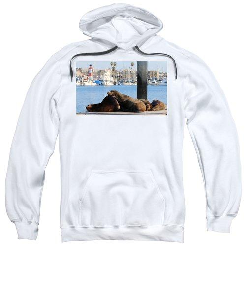 Sailing Dreams  Sweatshirt