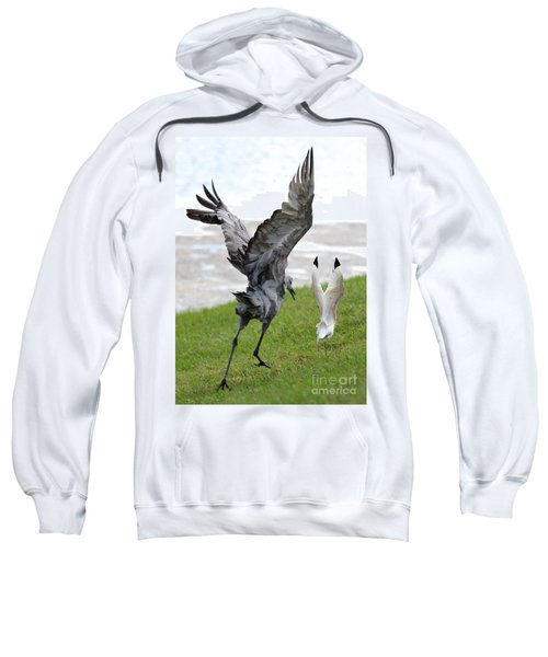 Sandhill Chasing Ibis Sweatshirt by Carol Groenen