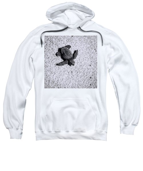 Sea Turtle In Black And White Sweatshirt