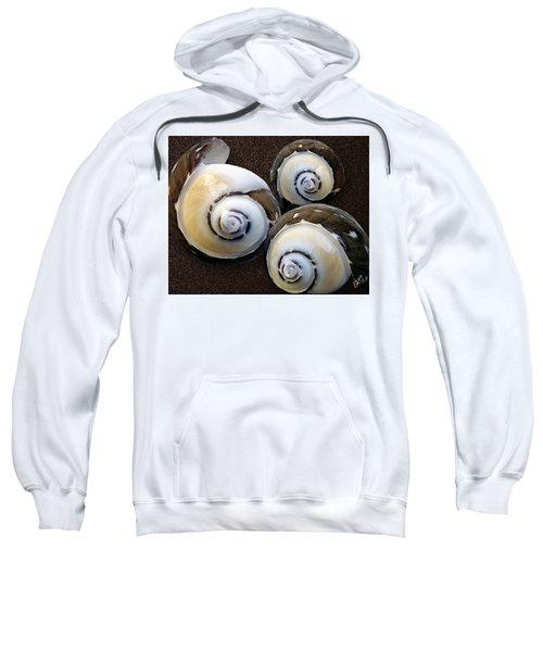 Seashells Spectacular No 23 Sweatshirt