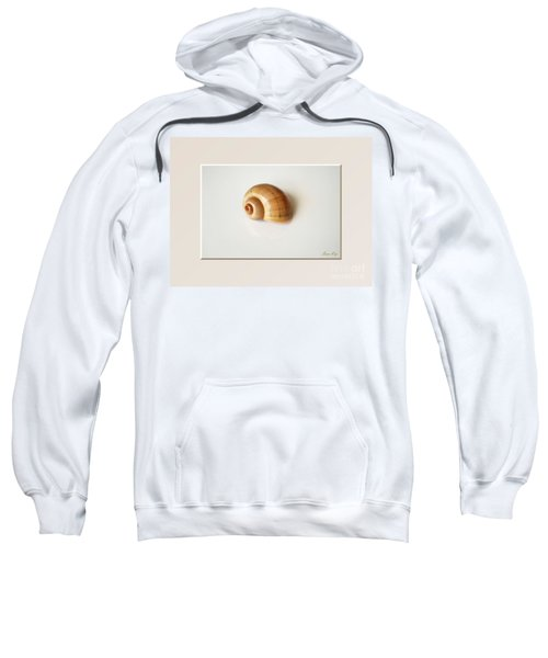 Shell. Delicate Colors Sweatshirt