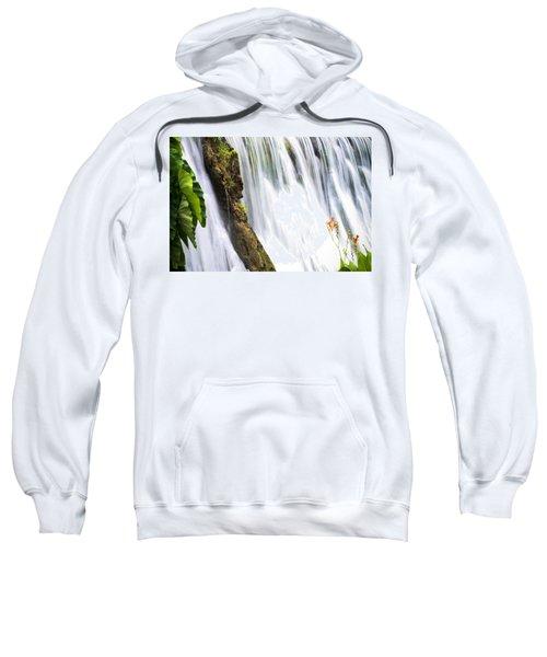 Silk Ribbons Sweatshirt