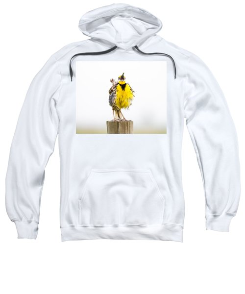 Singing Meadowlark 2 Of 3 Sweatshirt by Bill Swindaman
