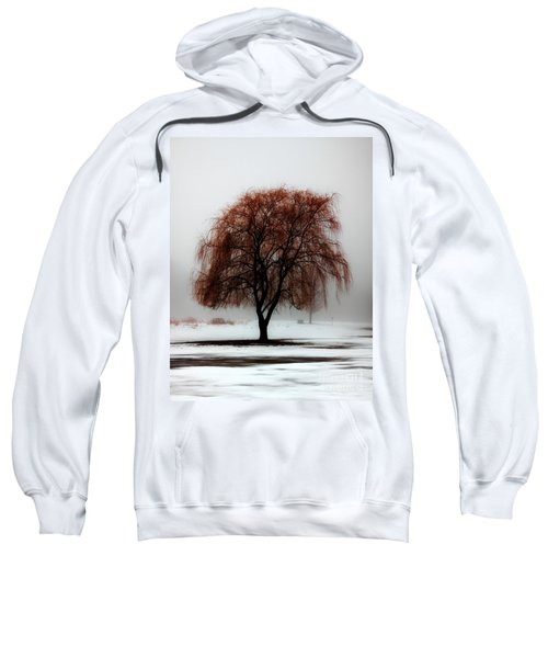 Sleeping Willow Sweatshirt