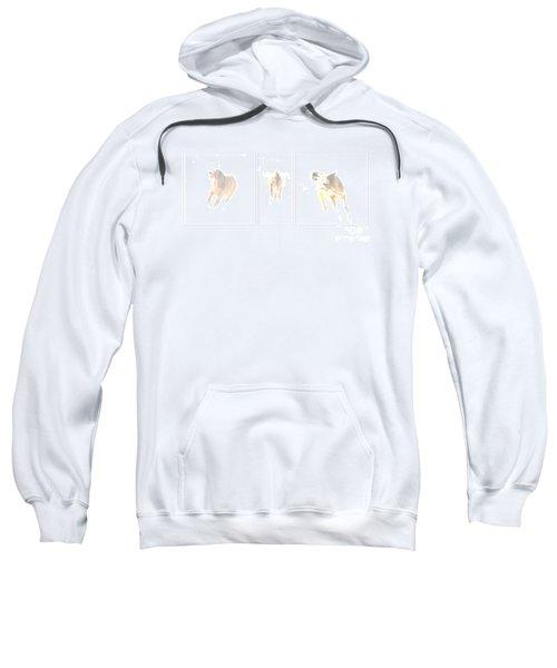 Snow Dance Sweatshirt
