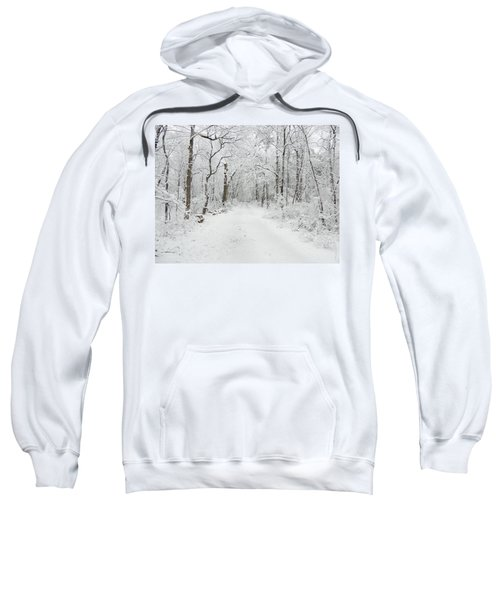 Snow In The Park Sweatshirt