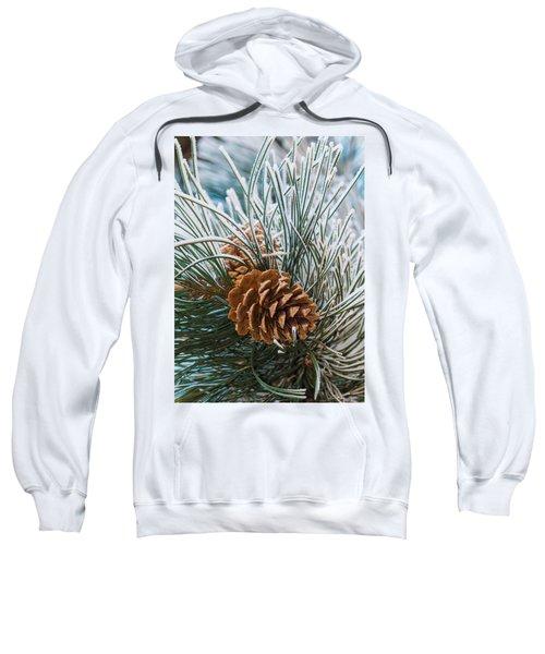 Snowy Pine Cones Sweatshirt