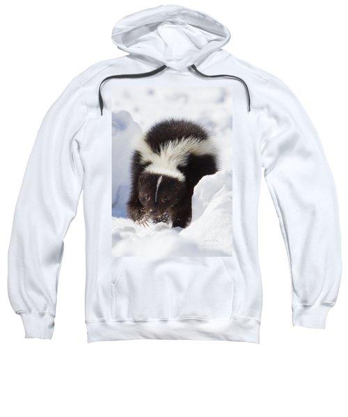 Snowy Walk Sweatshirt