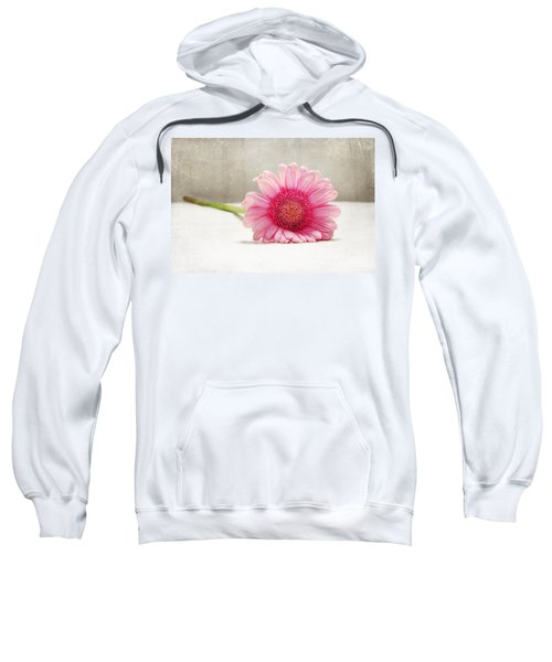 Softness In Pink Sweatshirt