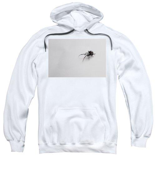 Southern Black Widow Spider Sweatshirt