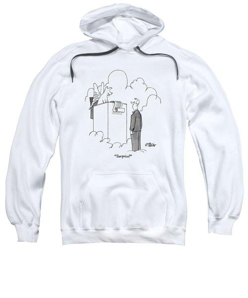 Surprise! Sweatshirt