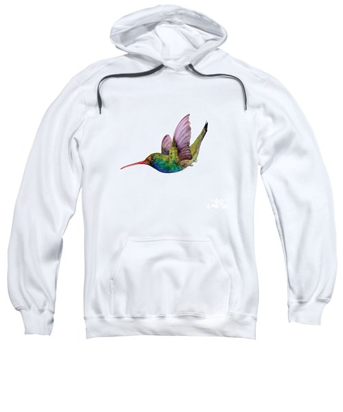 Swooping Broad Billed Hummingbird Sweatshirt