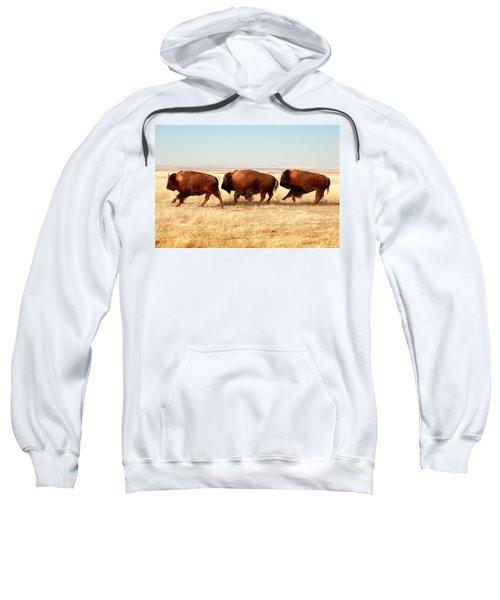 Tatanka Sweatshirt by Todd Klassy