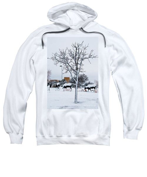 Sweatshirt featuring the photograph Heritage Grounds by Mae Wertz