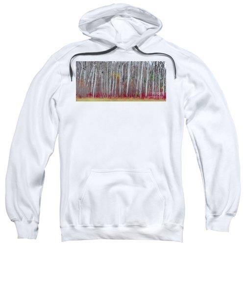 The Birches Panorama  Sweatshirt
