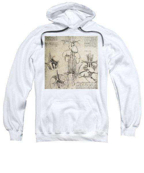 The Heart And The Circulation Sweatshirt