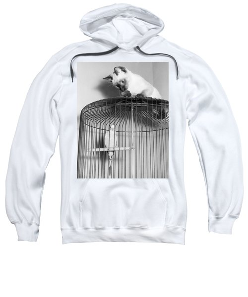 The Parakeet And The Cat Sweatshirt by Underwood Archives