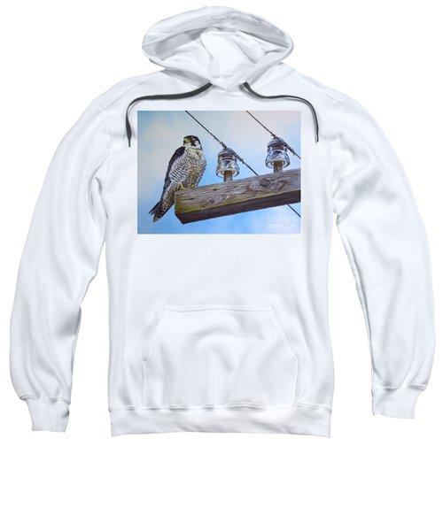 The Perfect Predator Sweatshirt
